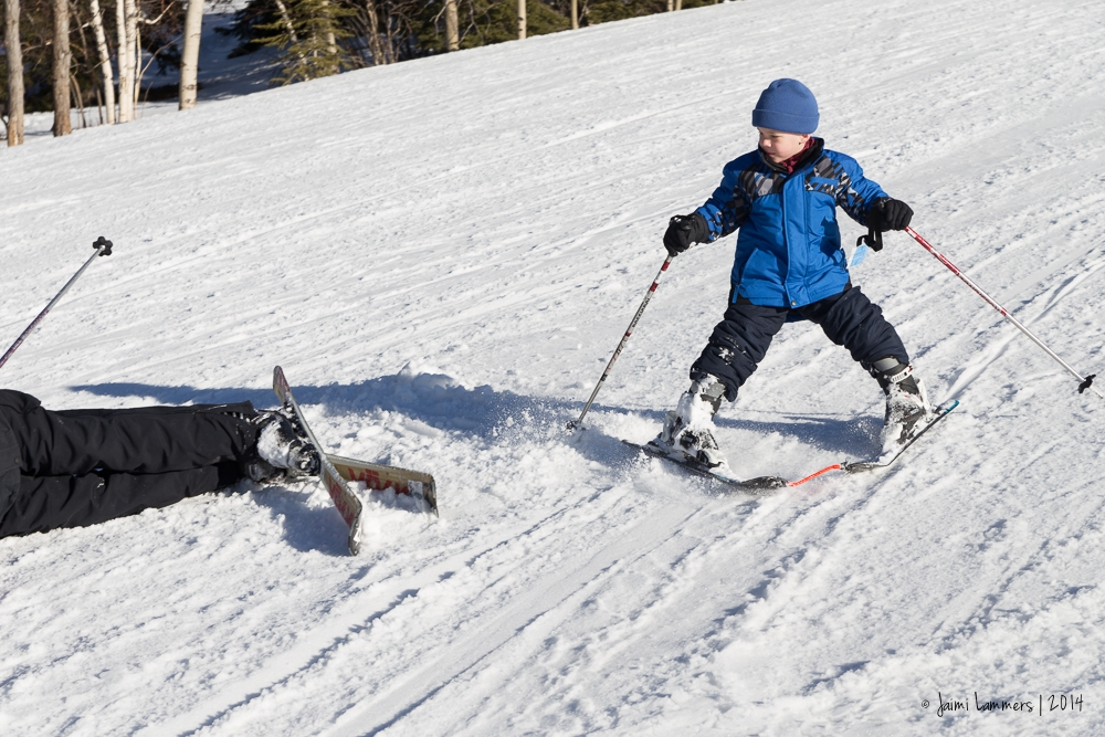 ski-8594