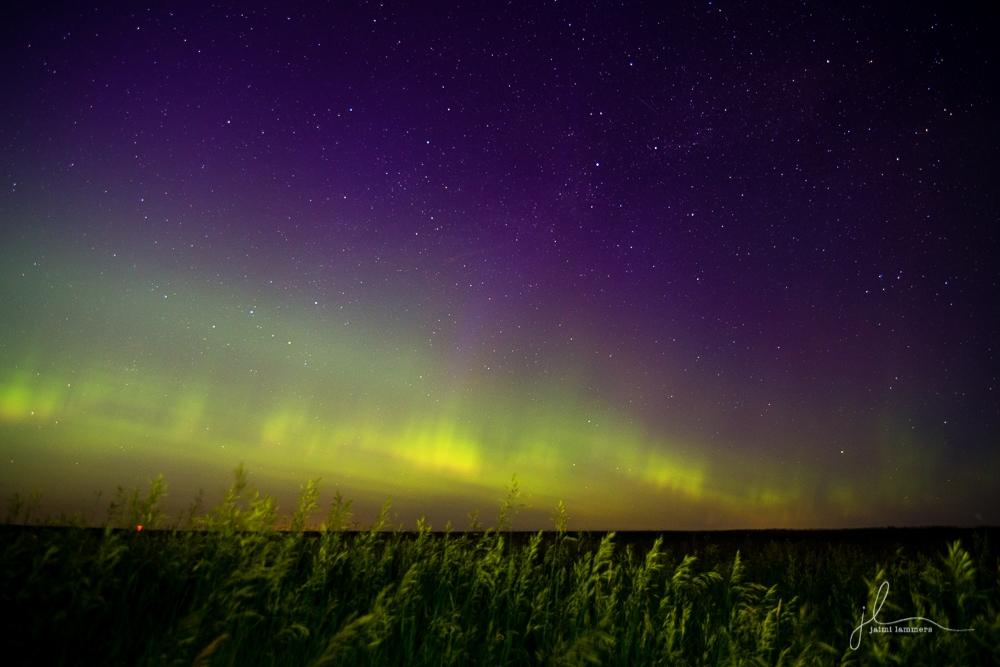 Northern Lights-0168