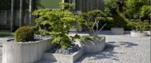 Neubepflanzung-Bild06