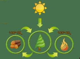 biomasa-pelets-domusa-calefaccion-blanes