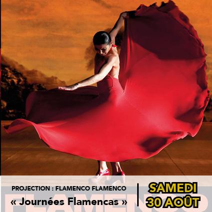 projection-flamenco-flamenco