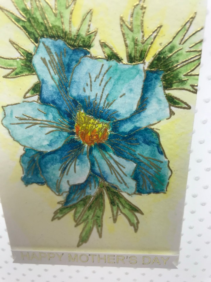 hand painted greeting cards made in the us