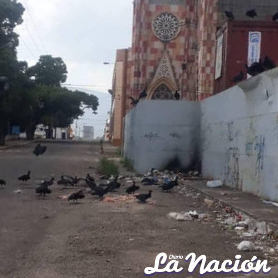 Lanzan basura y desechos cárnicos en el barrio San Carlos