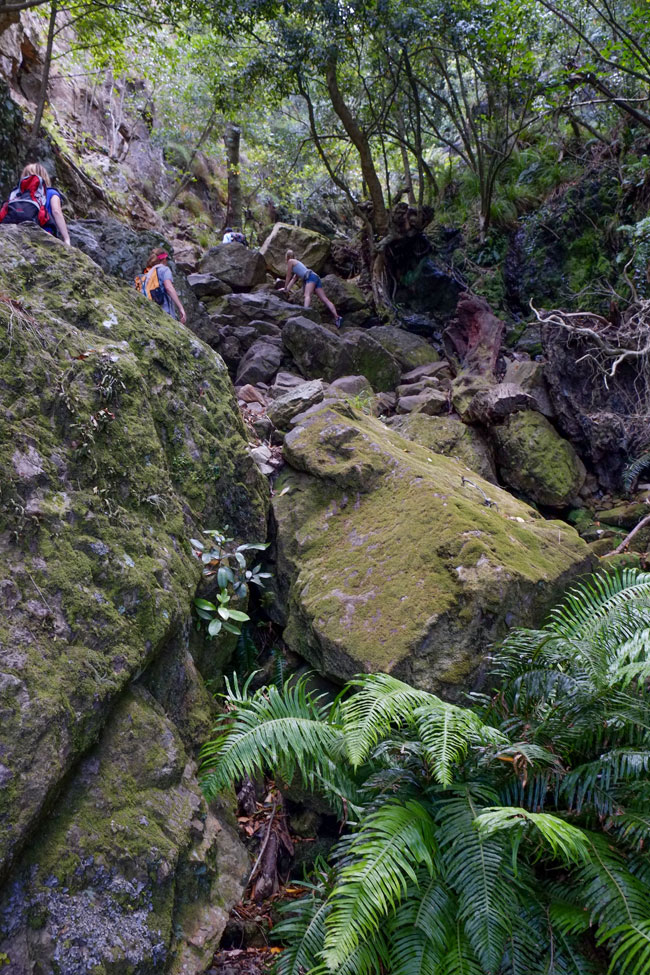 Skeleton Gorge Hike