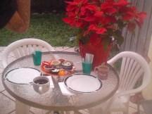 Poinsettia adorns patio table