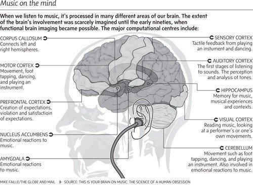 beneficios de la musica en el cerebro del niño
