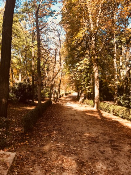 Park IMG_3523