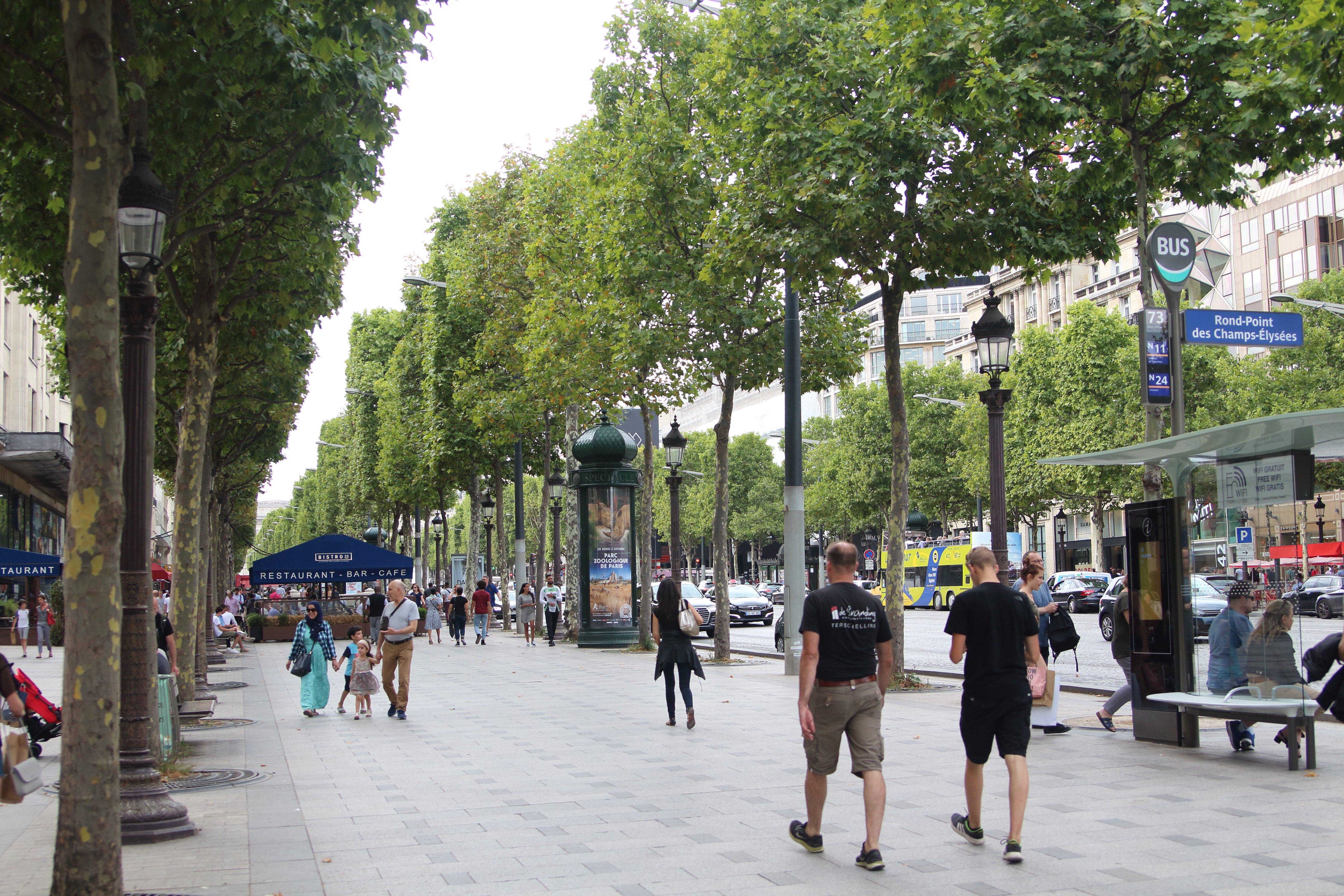 2017 法國14天自由行 巴黎/南法普羅旺斯/蒙特利埃/亞爾/亞維儂/卡爾卡松