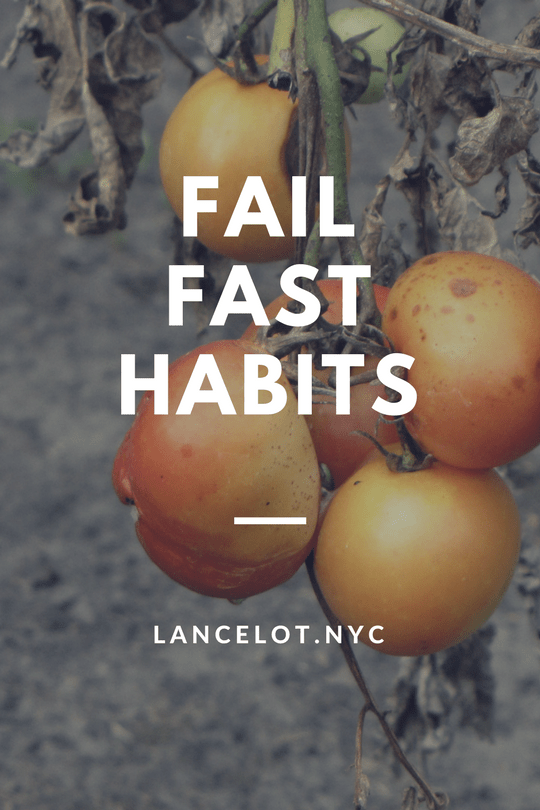 fail fast habits and resolutions failure
