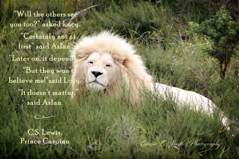 Aslan's words to Lucy - Image (c) Lancia E. Smith