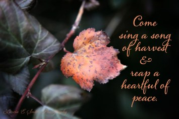 Sing a song of harvest