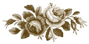 roses-engraving-godeys-graphicsfairybrn1