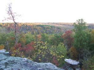 Photo by Zeb Weese. Livingston Co., Newmans Bluff.