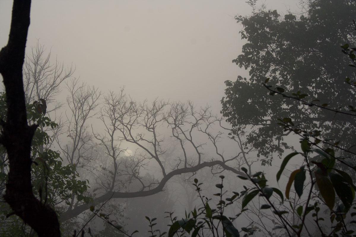land-and-lens-india-mahendra-6