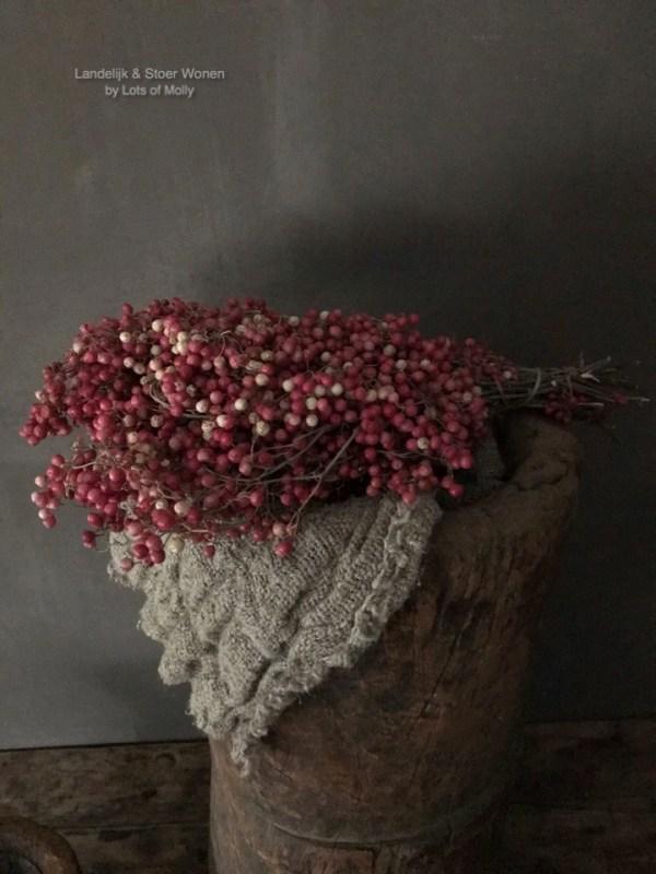 Prachtig bosje gedroogde pepperberry