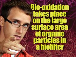 Passive landfill gas biofilter