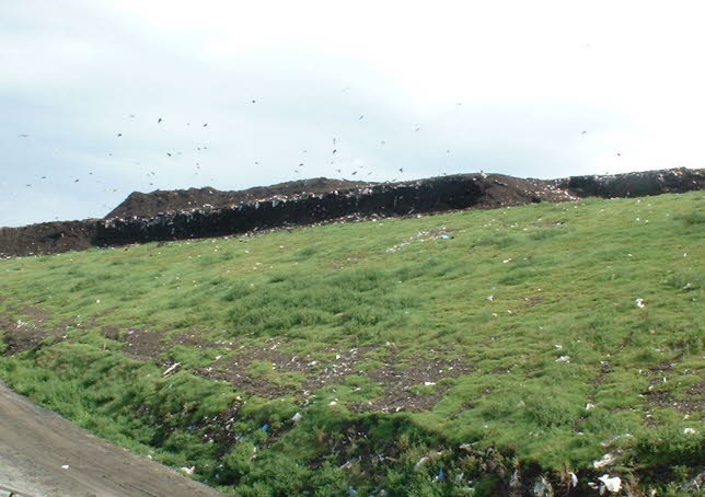landfill with compost temporary cover