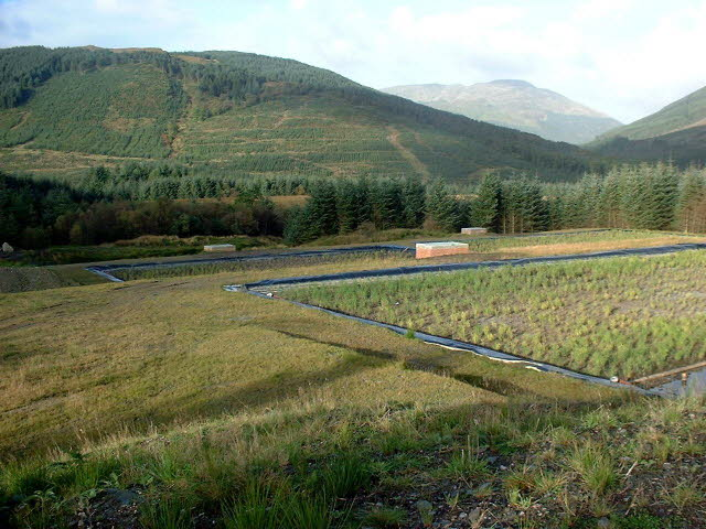 landfill reed bed in Scotland
