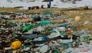A beach littered with plastic bottles and other rubbish