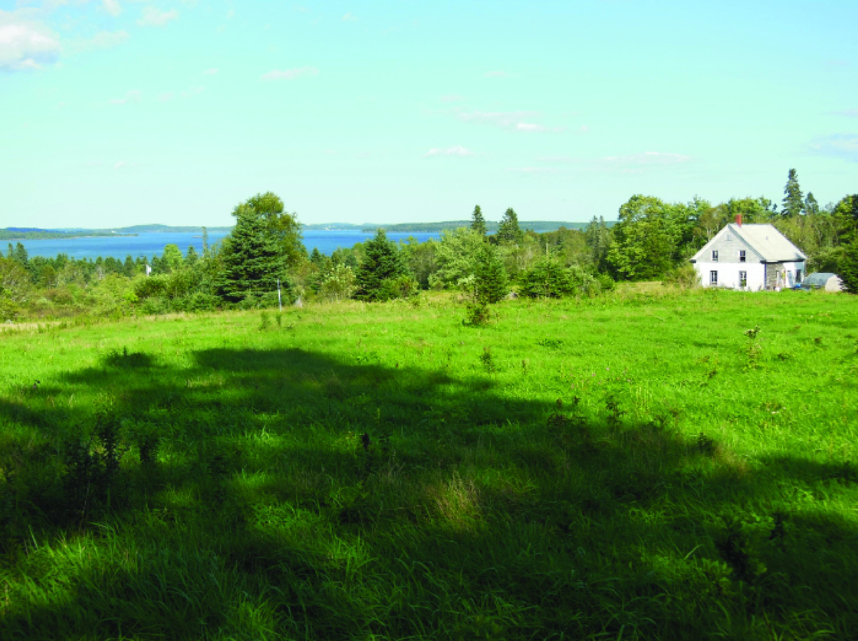 Long Cove Farm Maine Farm Link 01 Land For Good