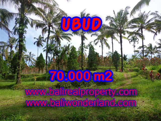 Magnificent Land for sale in Bali, mountain and paddy view by the river in Ubud Payangan Bali – TJUB358