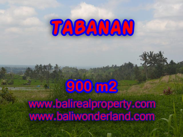 Property sale in Bali, Beautiful land for sale in Tabanan Bali – TJTB077