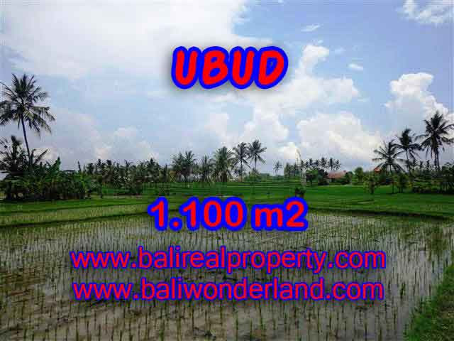 Land in Bali for sale, attractive view in Ubud Center Bali – TJUB376