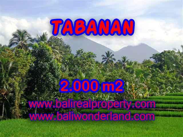 Land in Bali for sale, Stunning view in Tabanan Bali – TJTB121
