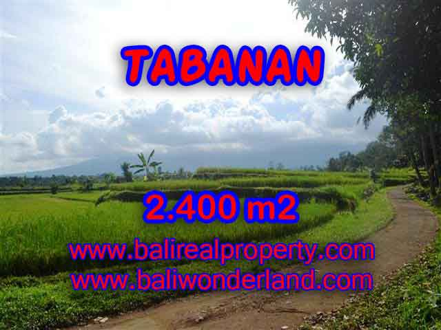 Land in Bali for sale, great view in Tabanan Bali – TJTB126