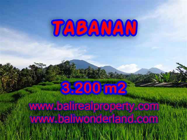 Fantastic Land for sale in Bali, Mountain and ricefields and river view in Tabanan Penebel – TJTB118