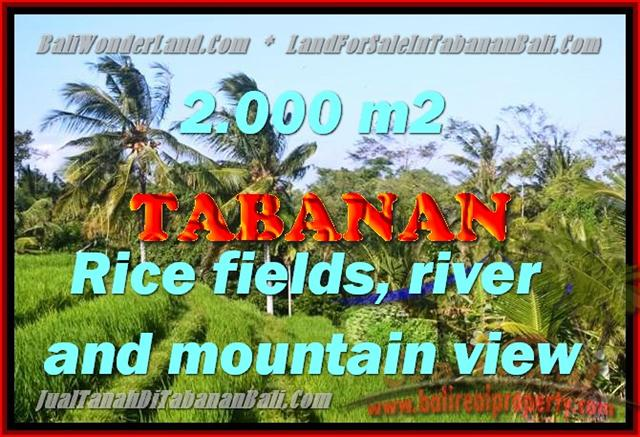 Exceptional Property in Bali, land for sale in Tabanan Bali – TJTB147