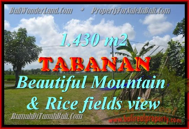 Spectacular Property for sale in Bali, land for sale in Tabanan Bali – TJTB145