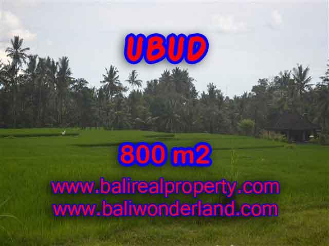 Outstanding Property in Bali for sale, land in Ubud for sale – TJUB396