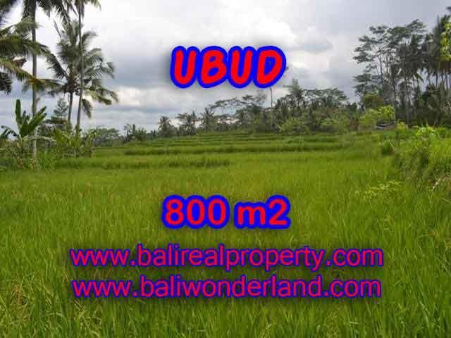 Astonishing Property for sale in Bali, LAND FOR SALE IN UBUD Bali – TJUB393