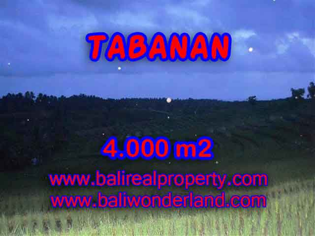 Land in Tabanan Bali for sale, nice view in Tabanan Selemadeg Bali – TJTB096
