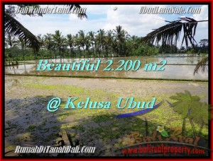 FOR SALE Exotic PROPERTY LAND IN Ubud Payangan BALI TJUB475