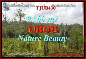 Exotic LAND FOR SALE IN Ubud Payangan BALI TJUB430
