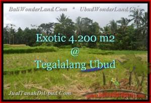 Magnificent PROPERTY UBUD BALI 4,200 m2 LAND FOR SALE TJUB461