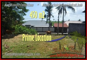 Magnificent PROPERTY LAND SALE IN Canggu Pererenan BALI TJCG153