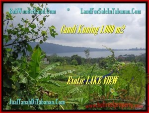 FOR SALE Magnificent LAND IN Tabanan Bedugul BALI TJTB179