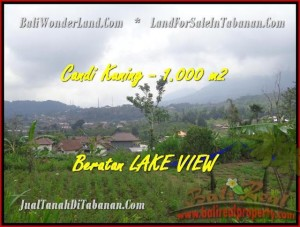 FOR SALE Magnificent LAND IN Tabanan Bedugul BALI TJTB180