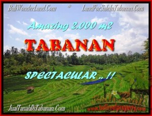 FOR SALE 2.000 m2 LAND IN TABANAN TJTB172