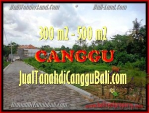 Magnificent LAND FOR SALE IN Canggu Pererenan BALI TJCG150