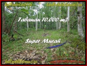 Beautiful LAND FOR SALE IN TABANAN TJTB177