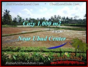 Exotic 1,000 m2 LAND FOR SALE IN UBUD BALI TJUB501