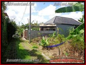 Beautiful PROPERTY CANGGU BALI 312 m2 LAND FOR SALE TJCG145