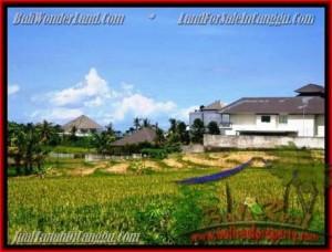 Beautiful PROPERTY CANGGU BALI 930 m2 LAND FOR SALE TJCG146