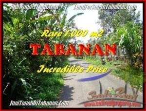 Affordable 1.000 m2 LAND IN TABANAN BALI FOR SALE TJTB171