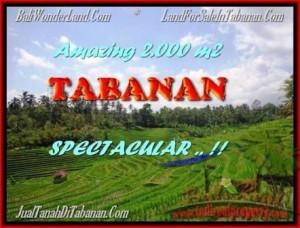 2.000 m2 LAND FOR SALE IN TABANAN BALI TJTB172