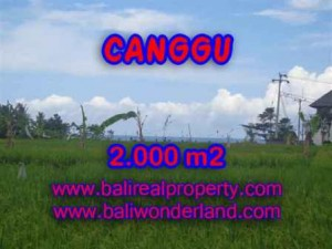 Affordable PROPERTY LAND IN CANGGU FOR SALE TJCG140